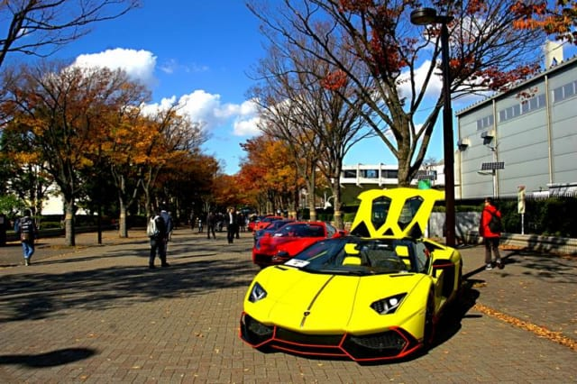 渋谷の代々木公園けやき並木にスポーツカーがズラリ